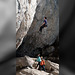 Climbers Paradise (5)