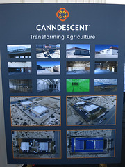 Canndescent Ribbon-cutting (3037)