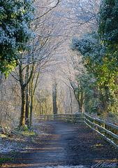 HFF –  A Wintery Wonderland fence