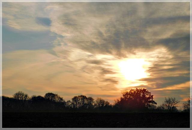 Retour de promenade , le soleil va bientôt se coucher..............
