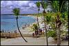 Catalina : una spiaggia perfetta