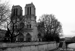 Notre Dame Cathedral - Paris, France