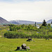 Þingvellir - Das Herz Islands - The heart of Iceland
