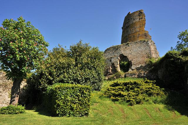 Ruines du château de Mondoubleau