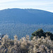 Sunset Crater1