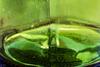 #35 Flasche leer (PiP)