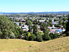 Tokoroa, South Waikato.