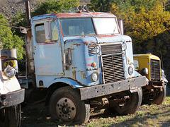Old International Harvester COE (cab over engine) Truck