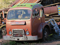 1963 White 3000 COE (cab over engine) Truck