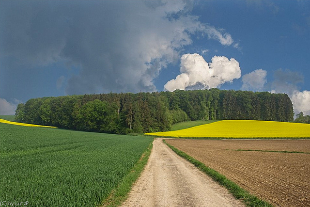 Crops and Clouds (330°)