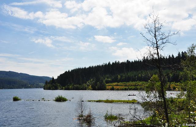 am Schluchsee in der Nähe von Aha (© Buelipix)