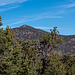 Sunset Crater6