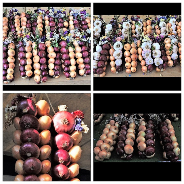 Impressions of the onion market Bern