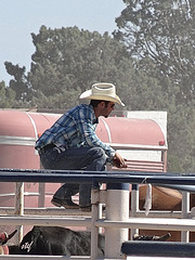 HFF for you and this lonesome cowboy