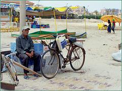 Port Said : Il pescatore di arselle in attesa della bassa marea col suo attrezzo retino raschiatore e bicicletta