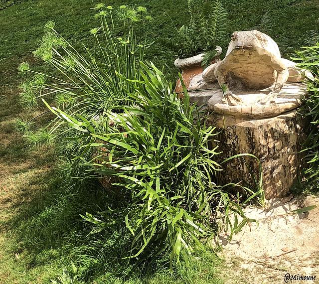 Grenouille de marbre(en bois)