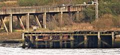 Views of the Tyne from the derelict site that used to be Swan Hunter Shipyard Wallsend
