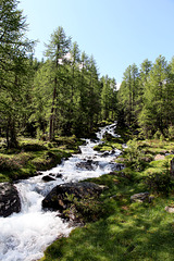 Rundwanderung -Weissbrunnsee -Obere Weissbrunnalm