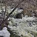 Oak Creek – Allens Bend Trail, Sedona, Arizona
