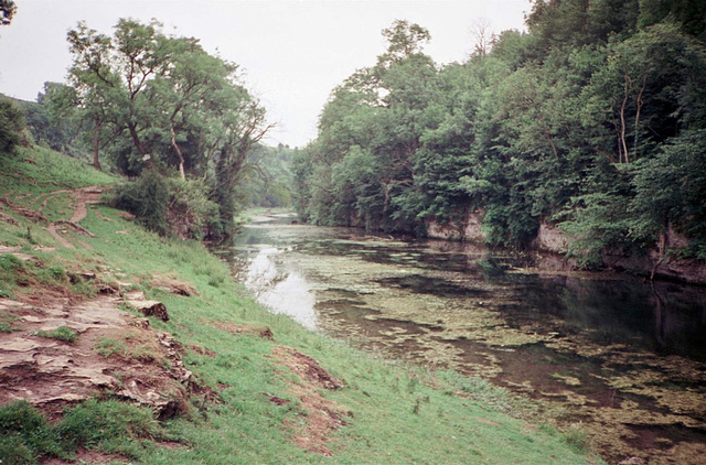 Looking back downstream on the River Lathkill from near Over Haddon (Scan from July 1991)