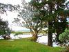 Whitianga Shoreline'