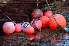 Floats at rest
