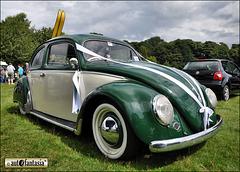 VW Beetle - Details Unknown