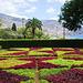 Madeira Funchal May 2016 GR Gardens 3