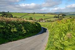 driving through Devon