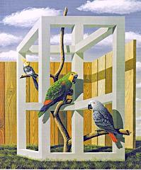 papagoj