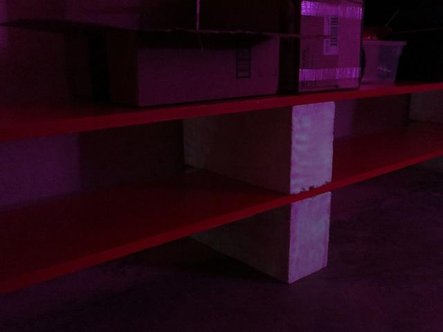 Shelves (1211)
