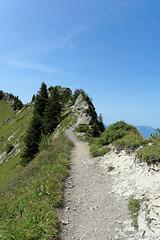 Wanderweg auf der Schynigen Platte (© Buelipix)