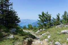 Wanderweg auf der Schynige Platte (© Buelipix)