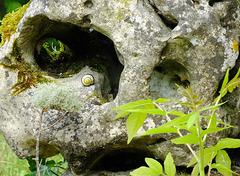 Le gardien de la caverne