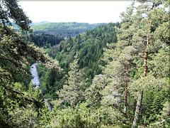 Entre Tence et le Chambon-sur-Lignon (43) 7 juin 2012. La vallée du Lignon.
