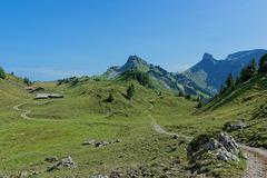 Schynige Platte (© Buelipix)