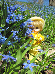 Eggie and spring flowers