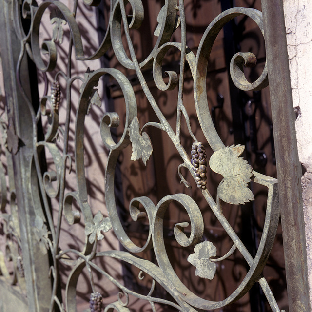 Wrought Grape Fence