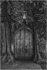Door Mono