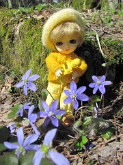 Eggie took her spaceman out to see spring flowers
