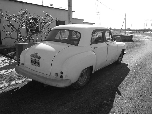Dodge 1952 à Ramon