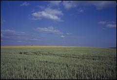 Landschaft in Velvia