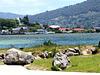 At Lake Rotorua.