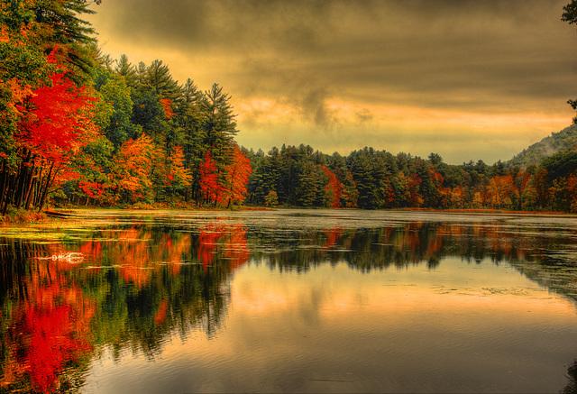 Mt Toby pond