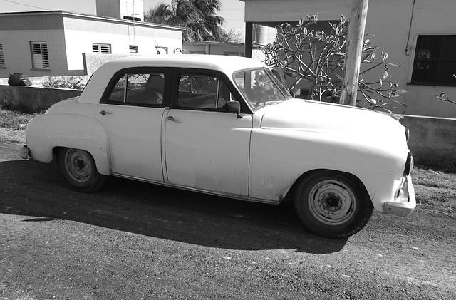 Ramon's Dodge 1952
