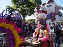 Carnival of Barranquillo (Colombia).