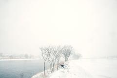 Snow at tamariver