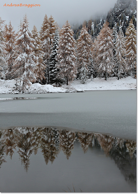 Neve d'Autunno...