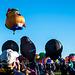 Albuquerque balloon fiesta.11jpg