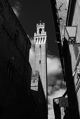 Tuscany 2015 Siena 3 X100t mono